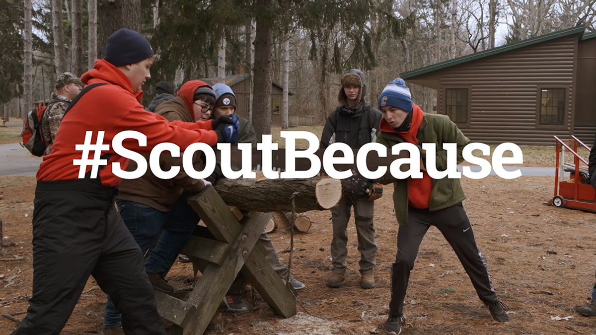 Scout Because video